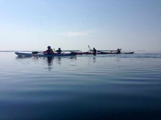 Stilla paddling.IMG_2545_2644