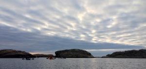 Paddlare på västerhavet.IMG_3061_3203
